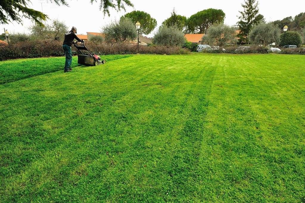 Cr ation et entretien des espaces verts association c 39 mieu for Emploi espace vert bourgogne